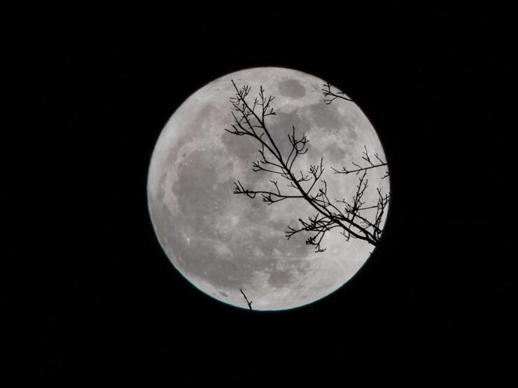 All the Full Moon Dates in 2021 for your calendar | The ...